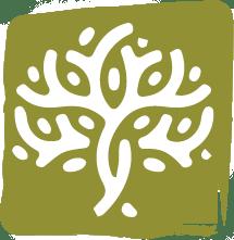 Eco_icon2